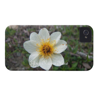 Little White Flower; Customizable iPhone 4 Case