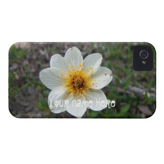 Little White Flower; Customizable iPhone 4 Case-Mate Case
