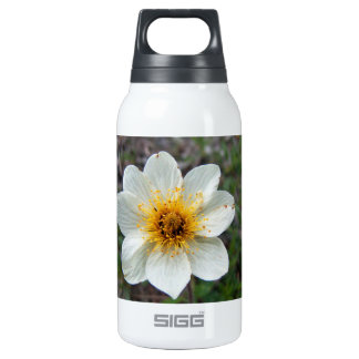 Little White Flower; No Text Thermos Bottle