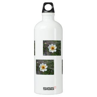 Little White Flower; No Text Water Bottle