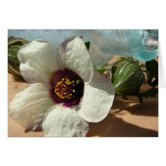 Little White Flower, Vintage Bottle, Pumpkin Card