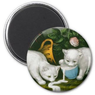 little white kitties getting into mischief milk 2 inch round magnet