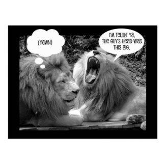 little white lion ~ funny postcard