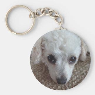 Little White Teacup Poodle Dog Keychains