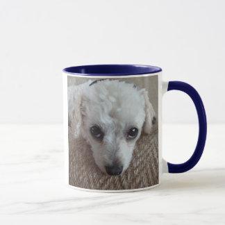 Little White Teacup Poodle Dog Mug