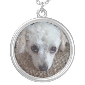 Little White Teacup Poodle Dog Round Pendant Necklace