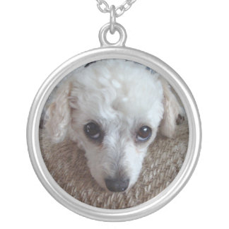 Little White Teacup Poodle Dog Silver Plated Necklace