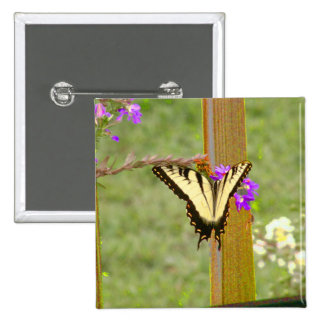Little Wing Tiger Swallowtail Pinback Button