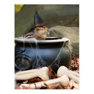 Little Witch Chipmunk Postcard