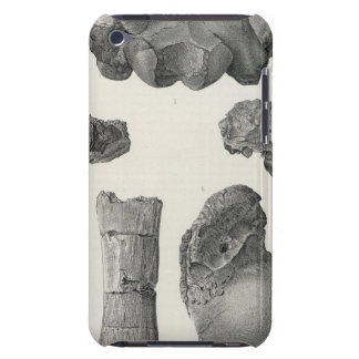 LIV Coryphodons Barely There iPod Case