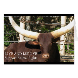 LIVE AND LET LIVE SUPPORT ANIMAL RIGHTS CARD