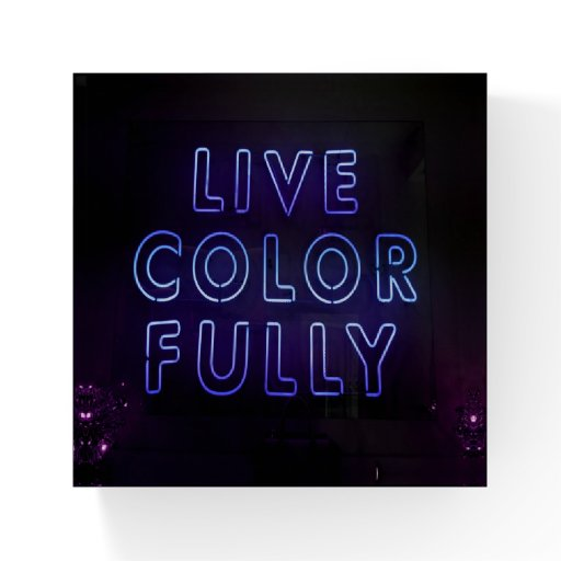 Live Colorfully Neon Sign Paperweight