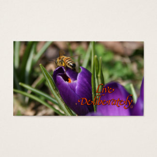 Live Deliberately w/honey bee pollinating Crocus Business Card