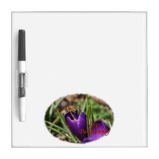 Live Deliberately w/honey bee pollinating Crocus Dry-Erase Board