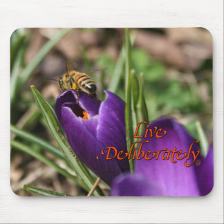 Live Deliberately w/honey bee pollinating Crocus Mouse Pad