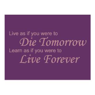 Live - Die Tomorrow pink Postcard