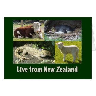 Live from New Zealand Greeting Card