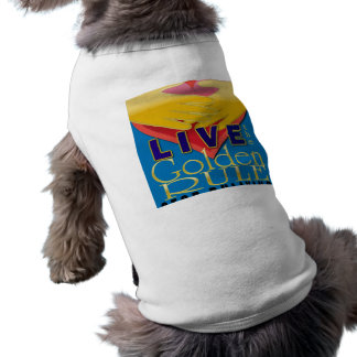 live golden rule stop bullying pet clothes