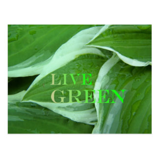 Live Green 2 Postcard