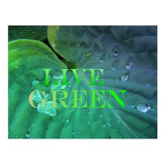 Live Green 3 Postcard