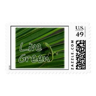 """Live Green"" Lizard Stamp"