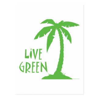 Live Green - Palm Tree Postcard