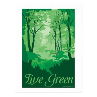 Live Green - Tree Hugger Postcard