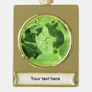 Live In Clover Gold Plated Banner Ornament