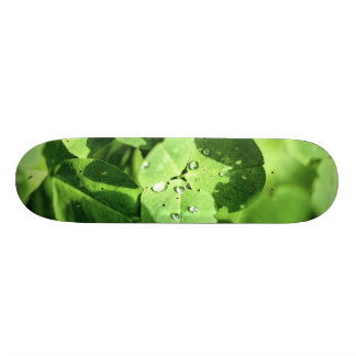 Live In Clover Skateboard Deck