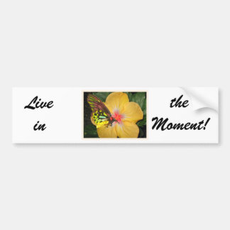 Live in the Moment Butterfly on Flower Design Bumper Sticker