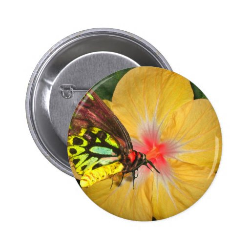 Live in the Moment Butterfly on Flower Designs Pins