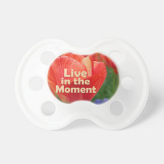 Live in the Moment w/vibrant Tulip Pacifier