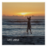 """Live Large"" Beach Sunset Poster (12"" x 12"")"