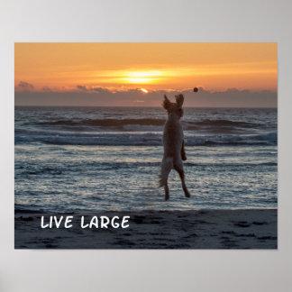 """Live Large"" Beach Sunset Poster (14"" x 11"")"