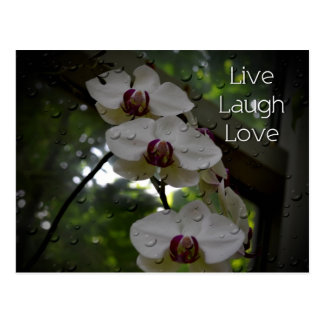 Live Laugh Love-Orchid Postcard