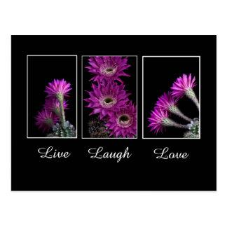 Live,Laugh,Love trio of Cactus flowers Postcard