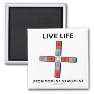 Live Life From Moment To Moment (Quadrupole) Refrigerator Magnets