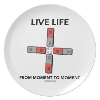 Live Life From Moment To Moment (Quadrupole) Dinner Plates