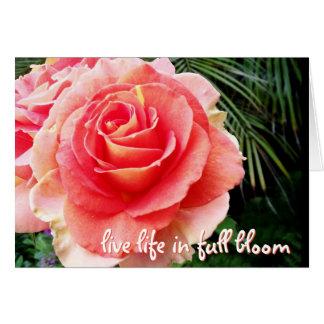 """""""Live life"""" huge pink rose photo blank inside card"""