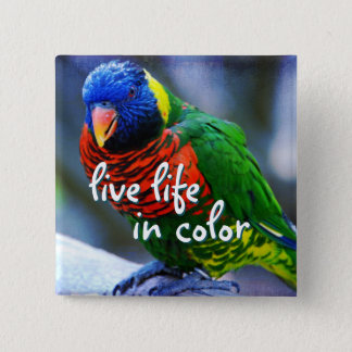 """""""Live life in color"""" red blue green bird photo Pinback Button"""