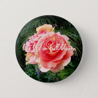 """Live life in full bloom"" quote pink rose photo Button"