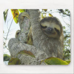 """Live Life Like a Sloth Mouse Pad<br><div class=""""desc"""">Bring some character into your office!</div>"""
