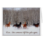 Live Life.....Like someone left the gate open! Greeting Card
