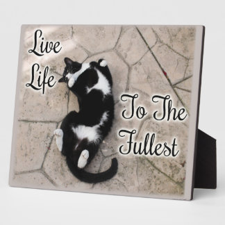 Live Life to the Fullest Plaque