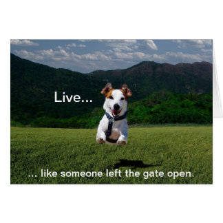 """Live Like Someone Left the Gate Open"" Card"