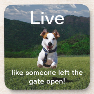 """Live Like Someone Left the Gate Open"" Coaster"