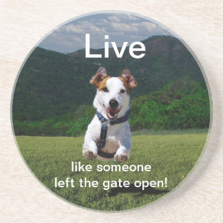 """""""Live Like Someone Left the Gate Open"""" Coaster"""