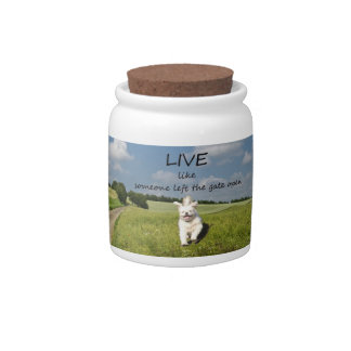 Live Like Someone Left the Gate Open Cookie Jar Candy Jars