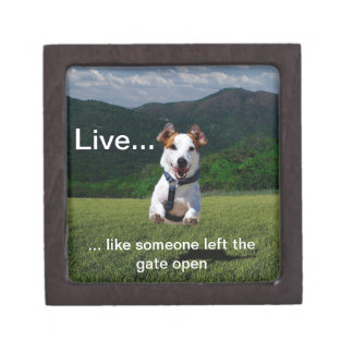 """""""Live Like Someone Left the Gate Open"""" Gift Box"""