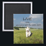 """&quot;Live Like Someone Left the Gate Open&quot; Magnet<br><div class=""""desc"""">Cute,  fluffy dog,  full of joy,  bounding through a field,  free. With the phrase: &quot;Live like someone left the gate open&quot; A great reminder to us all to seize the moment,  and enjoy life more! :)</div>"""